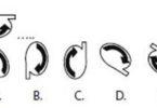 Latihan Soal Tes CPNS Materi Perputaran Gambar 8