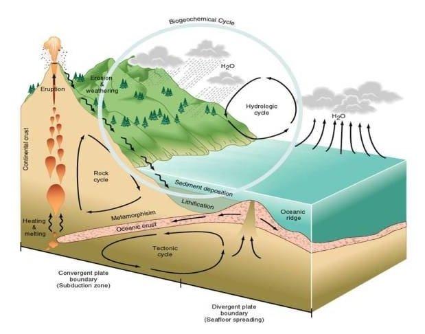 Daur Biogeokimia: Pengertian, Siklus Biogeokimia dan Contoh 1