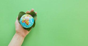 10 Cara Mengatasi Pemanasan Global 5
