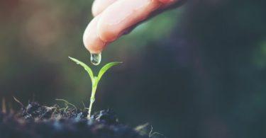Air Tanah: Pengertian, Manfaat, Jenis-jenis, Kandungan Air Tanah dan Kerusakannya 15