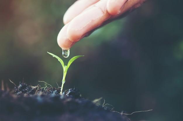 Air Tanah: Pengertian, Manfaat, Jenis-jenis, Kandungan Air Tanah dan Kerusakannya 1
