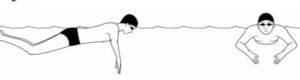 Pengertian Olahraga Renang: Teknik Dasar, Jenis Gaya, Peraturan dan Peralatannya 16