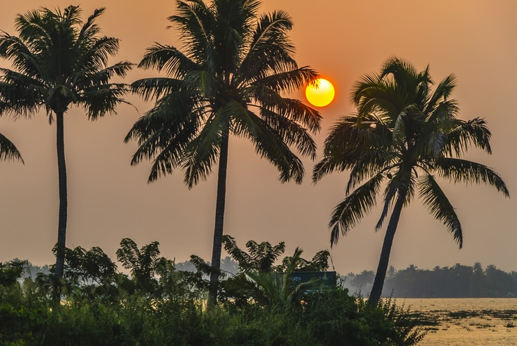Pengertian Iklim Tropis ,Ciri dan Persebaran 1