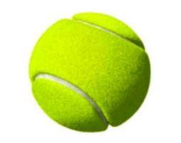 gambar bola kasti