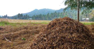 Limbah pertanian