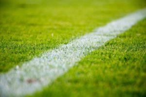 rumput lapangan sepak bola
